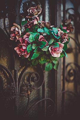 Blumen am Friedhofstor - p946m779241 von Maren Becker