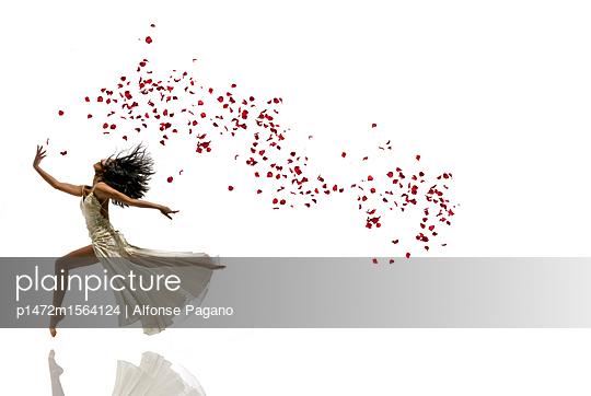p1472m1564124 von Alfonse Pagano