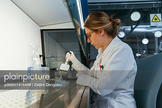 Laboratory technician pipetting in lab - p300m1416488 by Zeljko Dangubic