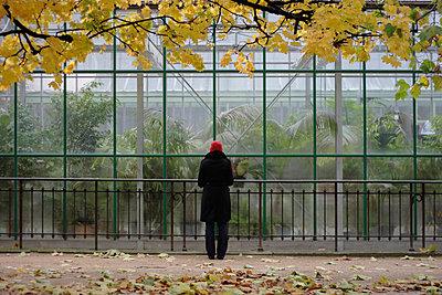 Glashaus - p4860063 von anneKathringreiner