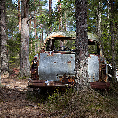 Rusty car in forest - p1168m1043222 by Thomas Günther