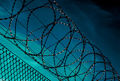 Barbed wire fence - p4510275 by Anja Weber-Decker