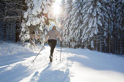 Frau mit Langlaufskiern im Wald. - p948m2014775 von Sibylle Pietrek