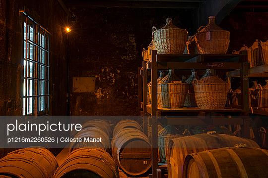 Barrels in winery cellar - p1216m2260526 by Céleste Manet