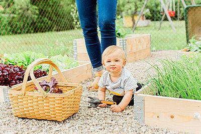 Baby boy in garden - p312m2049995 by Alicia Swedenborg