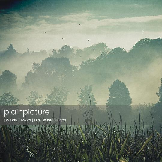 Germany, hilly landscape in fog - p300m2213728 by Dirk Wüstenhagen