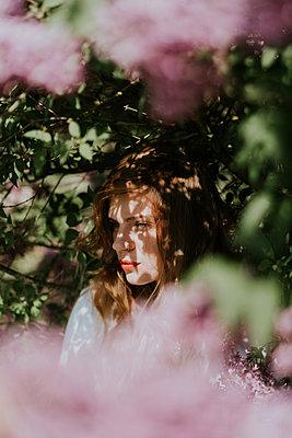 Young woman among pink blossoms - p1184m1222691 by brabanski