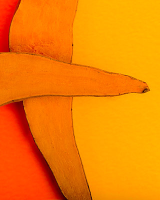 Sliced Yams on Orange and Yellow Background - p694m2097237 by Lori Adams