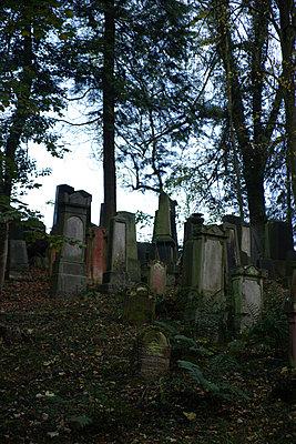 Deutschland, Jüdischer Friedhof - p260m2222605 von Frank Dan Hofacker