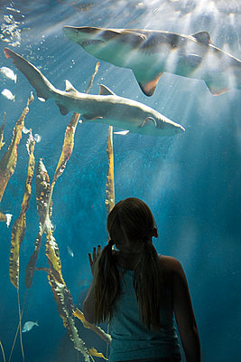 Girl watching sharks in aquarium - p9243229f by Image Source