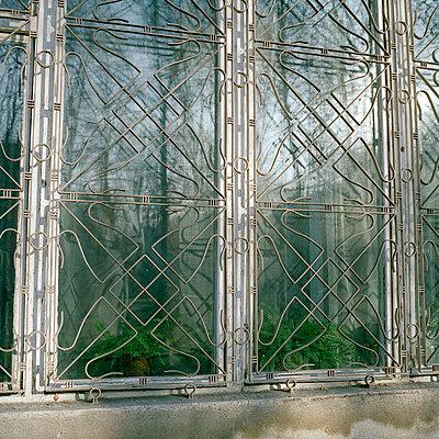 Fenstergitter - p949m658320 von Frauke Schumann