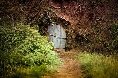 Hidden door 1 - p1007m853046 by Tilby Vattard