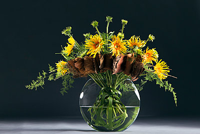 Bunch of flowers with Cocos nucifera, Typha, Asparagus plumosus, Echinacea, Gerbera - p300m1014977 by Anna Müller