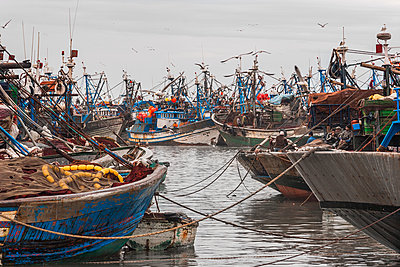 Morocco, Essaouira, Fishing boats in the harbor - p1280m2244971 by Dave Wall