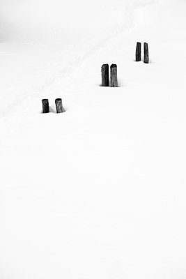 Fence post - p2480646 by BY