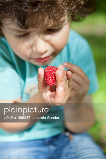 p045m1488347 by Jasmin Sander