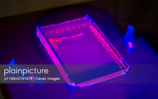 DNA samples for bioscience research - p1166m2191975 by Cavan Images