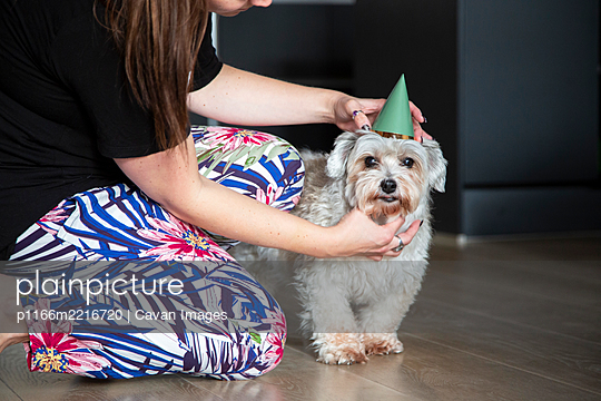 A dog mom adjusts her birthday boys hat - p1166m2216720 by Cavan Images