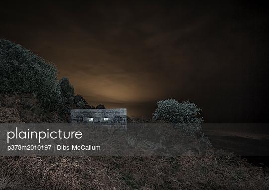 p378m2010197 von Dibs McCallum