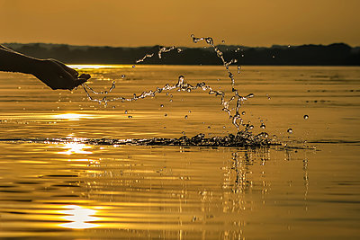 Splashing around in the evening sun - p1019m1496312 by Stephen Carroll