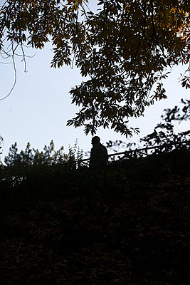 Man among trees - p1028m1496254 by Jean Marmeisse