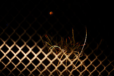 Grid at night - p1430m1503626 by Charlotte Bresson