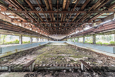 Abandoned swimming pool - p1440m1497499 by terence abela