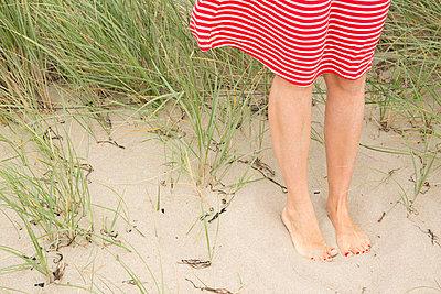 Sommer am Strand - p454m1056184 von Lubitz + Dorner