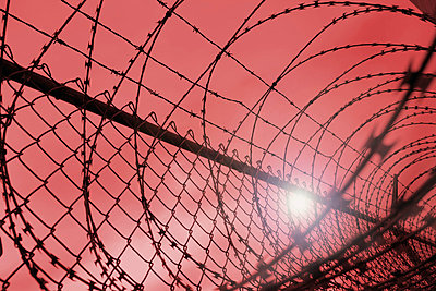 Sun shining through barbed wire fence - p4422369f by Design Pics