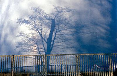 Schatten eines Baumes - p0190185 von Hartmut Gerbsch