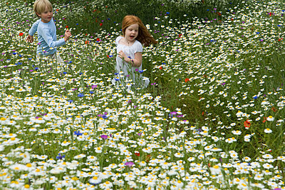 Children running in field of flowers - p42916338f by Henry Arden
