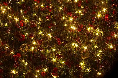 Christmas Illuminations - p307m1011967f by Tetsuya Tanooka