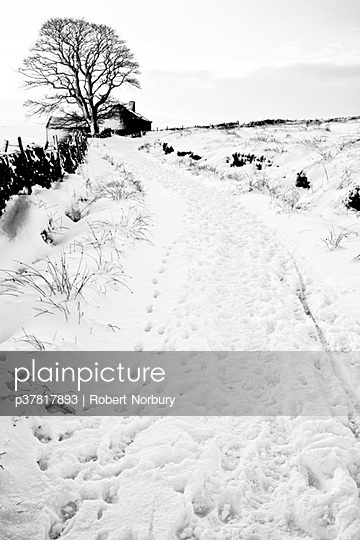 Cottage and track in snow - p37817893 by Robert Norbury