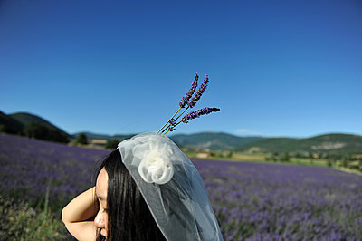 Bride in lavender field - p1468m1527648 by Philippe Leroux