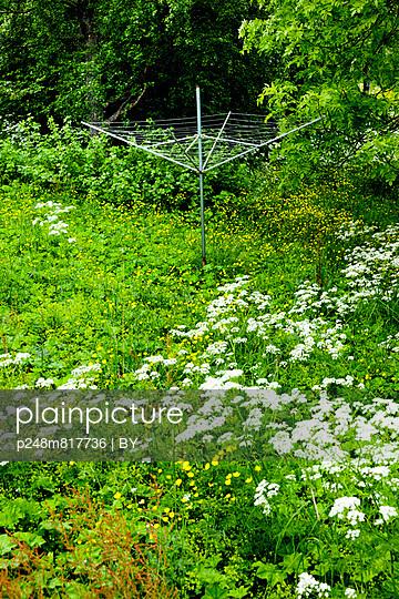 Plainpicture Plainpicture P248m817736 Verwilderter Garten