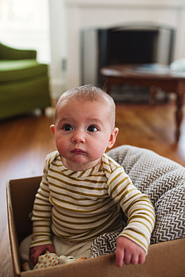 Baby im Karton - p1361m1225756 von Suzanne Gipson