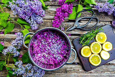 Preparation of lilac sirup, rosemary and lemon - p300m2103708 von Sandra Roesch