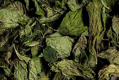 Tea leaves - p947m2071704 by Cristopher Civitillo