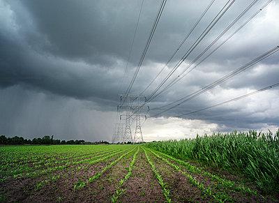 High-tension lines - p1132m1017012 by Mischa Keijser