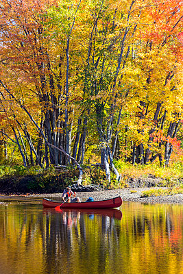 A man canoes through shallow water in a Maine river. Fall. - p1166m2094354 by Cavan Images