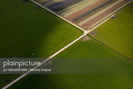 Fields and grassland, aerial view - p1132m2291560 by Mischa Keijser