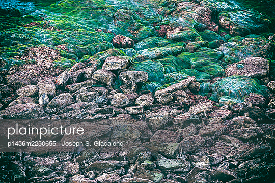 Reef and rocks on the coast. - p1436m2230655 by Joseph S. Giacalone