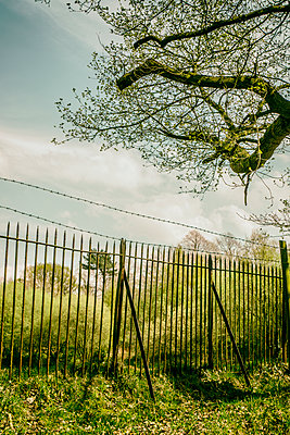 Old fence in the countryside  - p794m1146655 by Mohamad Itani