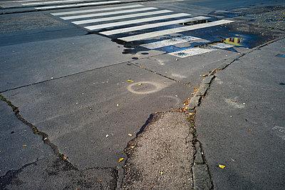 Zebra crossing - p979m1081225 by Jann Wilken