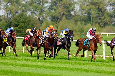 Pferderennsport - p6050011 von H. Kühbauch
