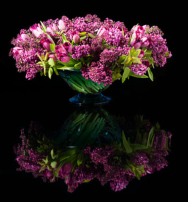 Bouquet of Pink Tulips and Lilac Flowers in a Vase - p669m824023 by Ben Miller