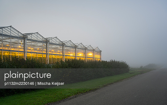 Netherlands, Greenhouse in the fog - p1132m2230146 by Mischa Keijser