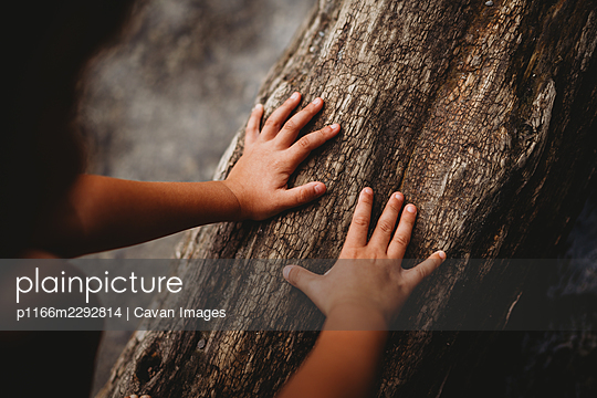 p1166m2292814 von Cavan Images
