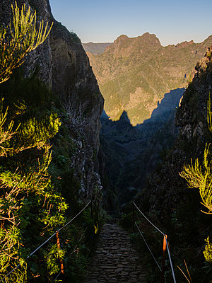 Hiking trail in Madeira - p1600m2175663 by Ole Spata