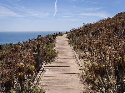 Path, Malibu - p1232m1041153 by Moritz Schmid